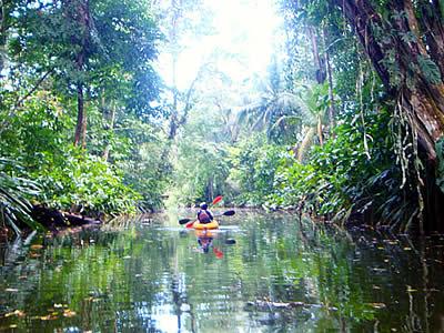 Kanu-Tour durch den Dschungelfluss